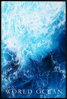 Poster & Gallery prints World Ocean, Poster