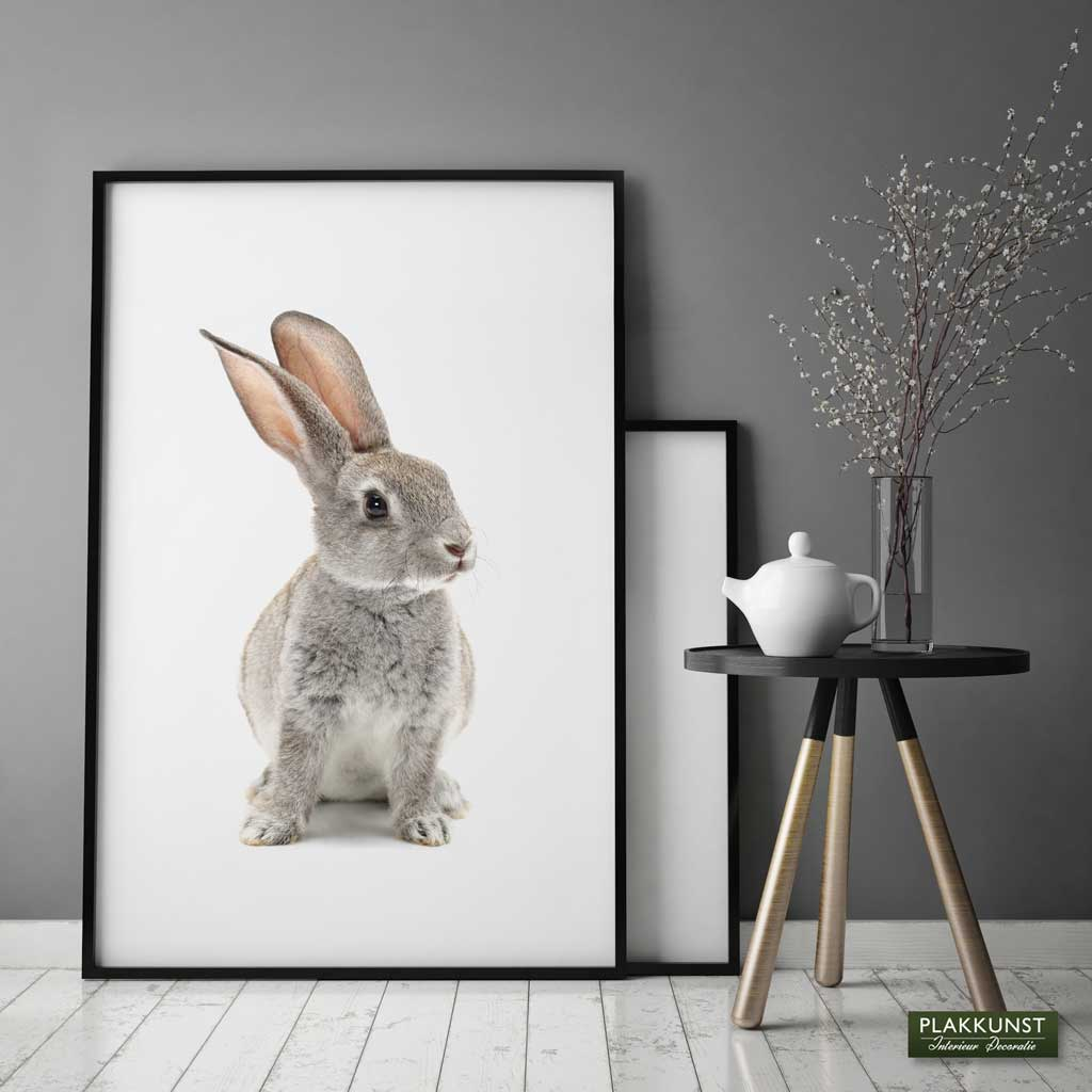 Bunny, Poster