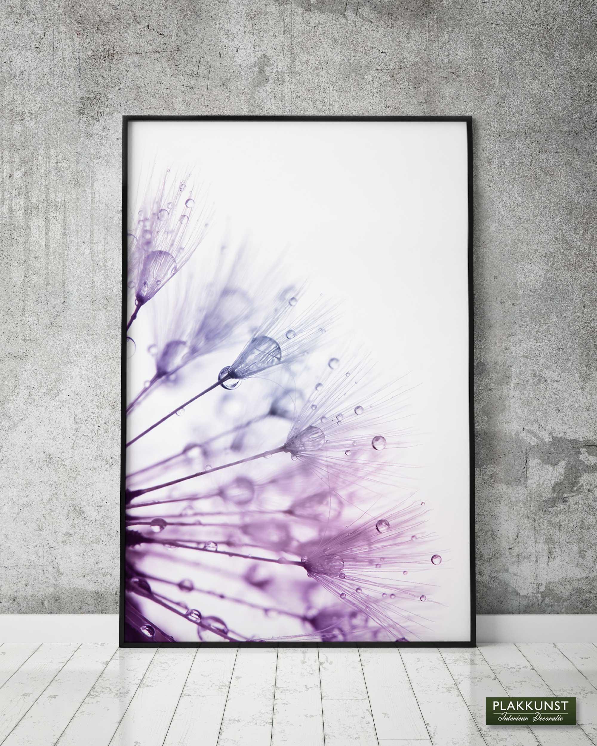 Dandelion, Poster