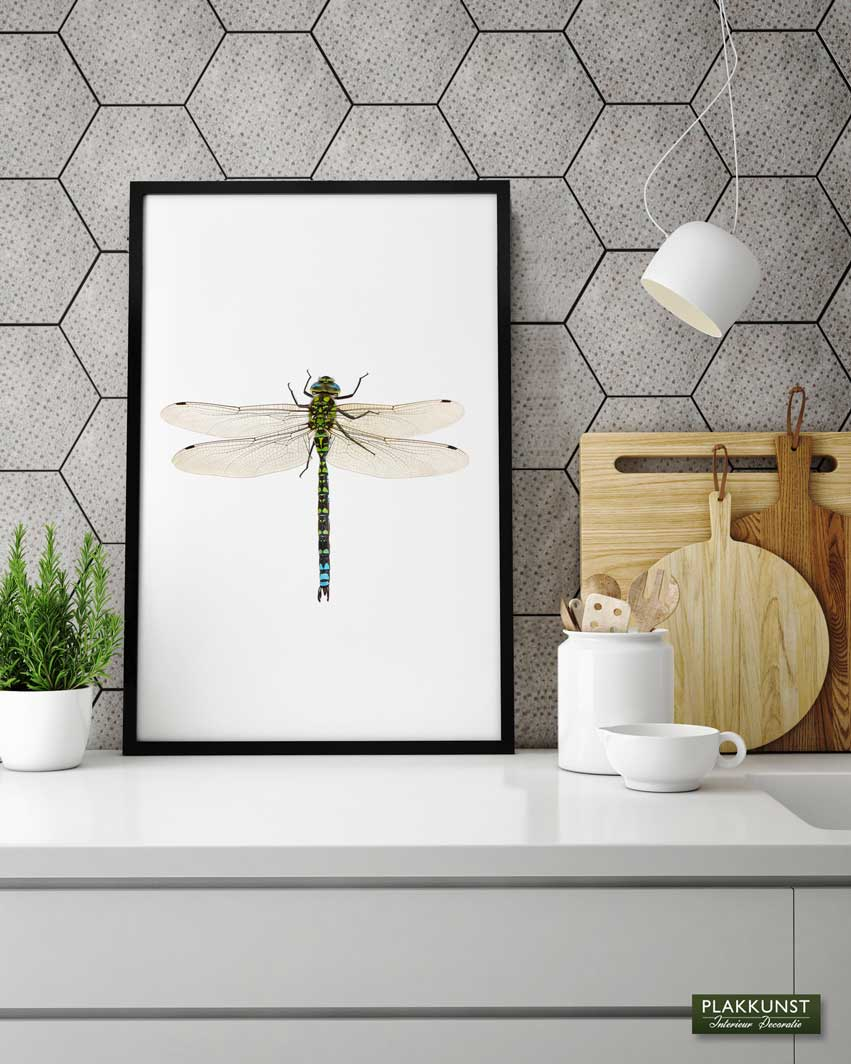 Dragonfly, Poster